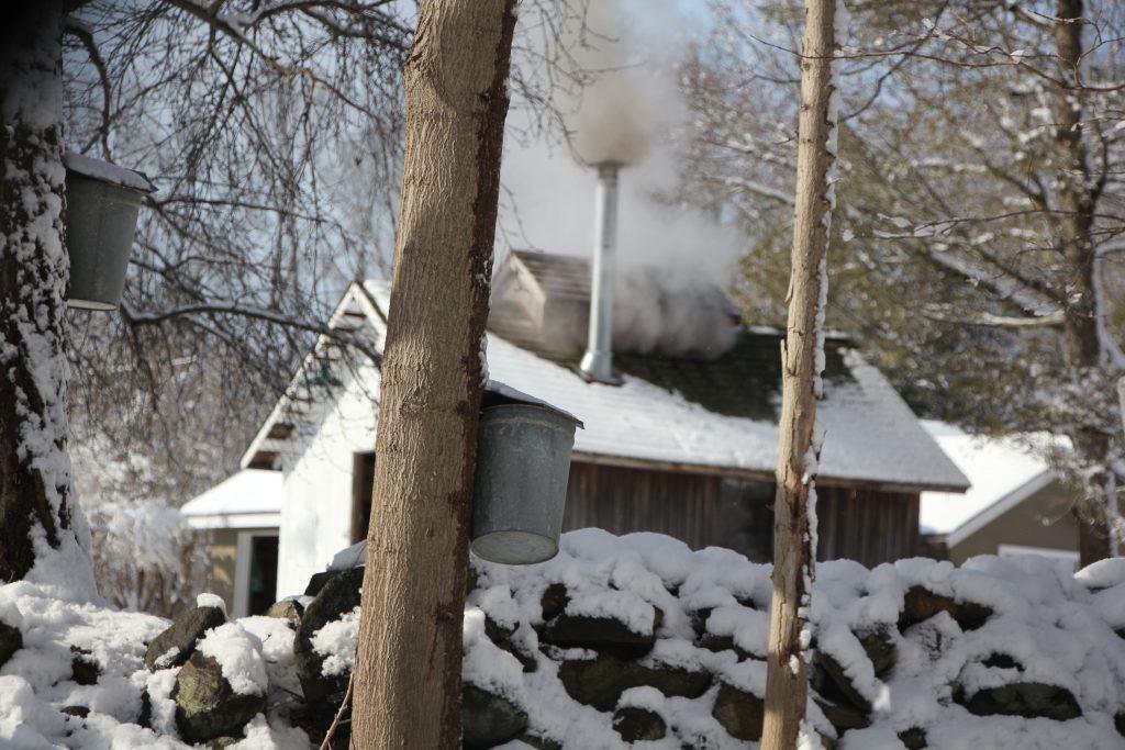 Sap House with Snow