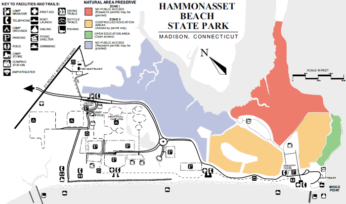 Hammonasset Park Map